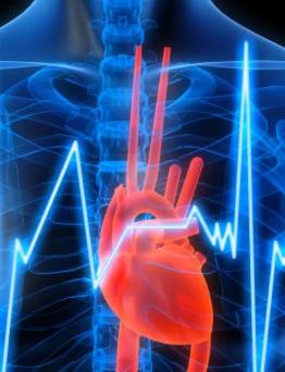 ecg elettrocardiogramma